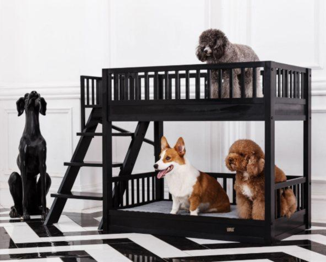 Miniature Bunk Bed For Dogs Your K9 Will Love And Enjoy